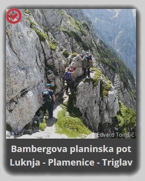 Bambergova